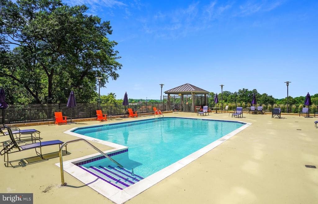 Pool - 1830 FOUNTAIN DR #1206, RESTON