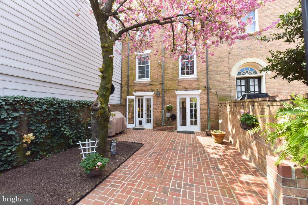 Spectacular blooming cherry in the rear garden - 320 N ROYAL ST, ALEXANDRIA