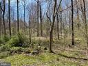 Corner lot, backs to trees - 14707 KAMPUTA DR, CENTREVILLE