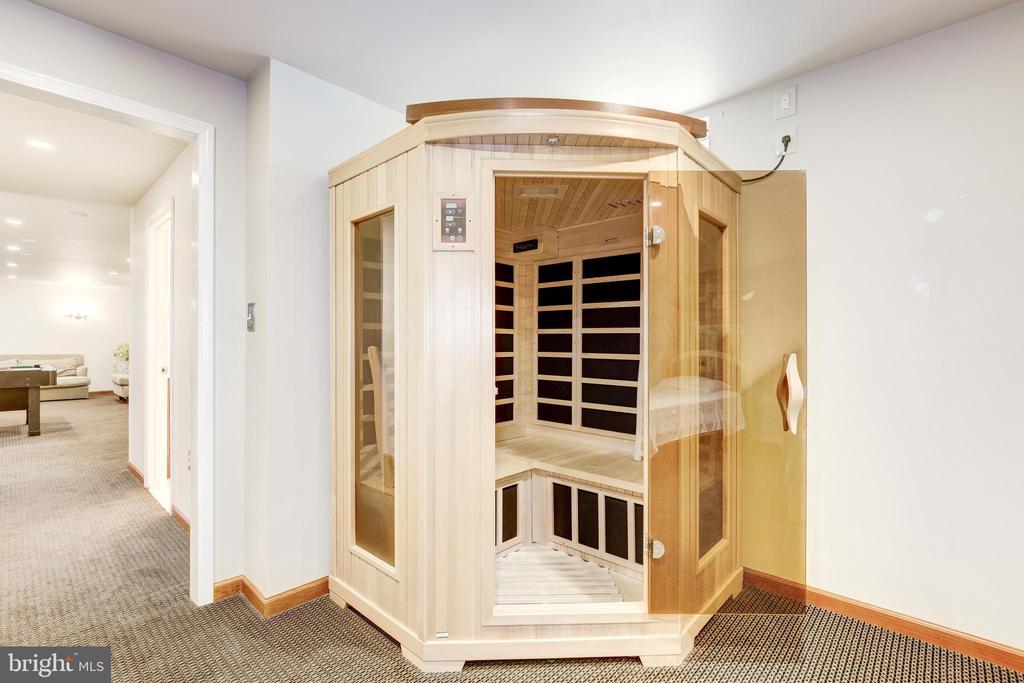 Suana in Office / Bonus Room - 42969 DEER CHASE PL, ASHBURN