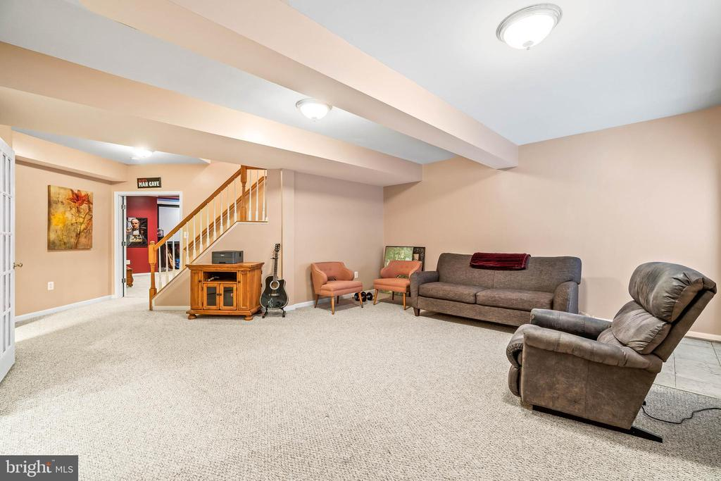 Rec Room - 4170 MCCLOSKEY CT, CHANTILLY
