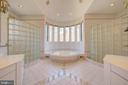 Primary Bathroom w/Jacuzzi, Shower, 2 Vanities - 220 VIERLING DR, SILVER SPRING