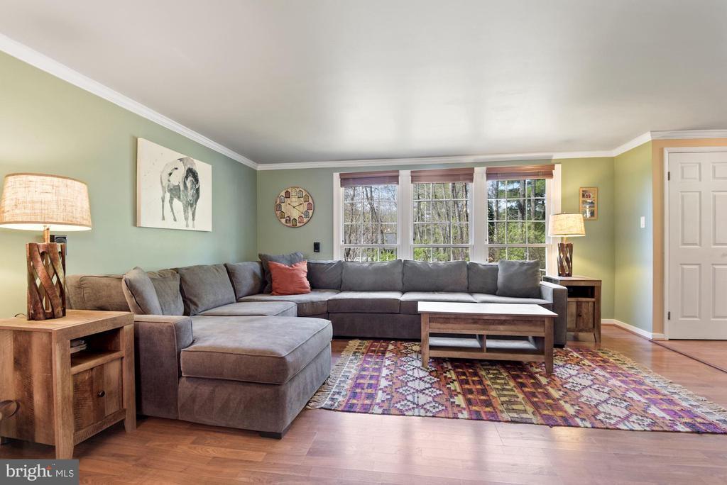 Living Room - Crown Molding & Wide Plank Flooring! - 11007 HOWLAND DR, RESTON