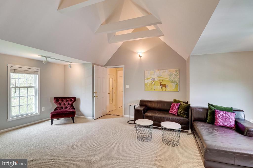 3rd floor family room - 7945 BOLLING DR, ALEXANDRIA