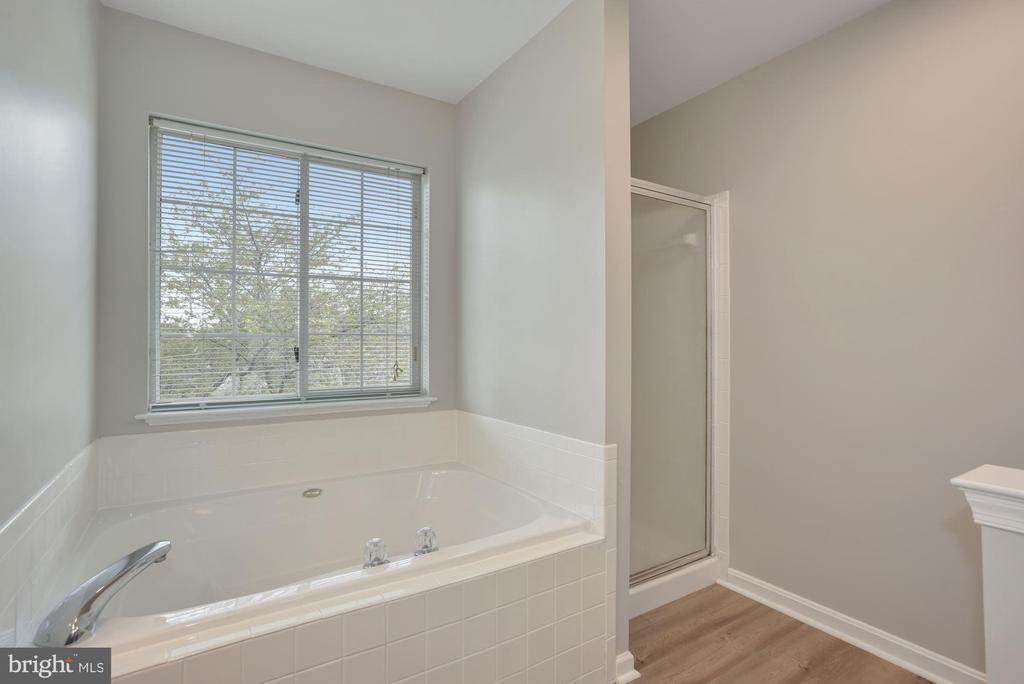 Large soaking tub with separate shower - 20642 OAKENCROFT CT, ASHBURN