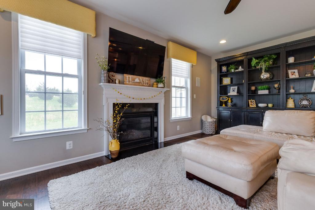 Family Room with Gas Fireplace - 24215 CRABTREE CT, ALDIE
