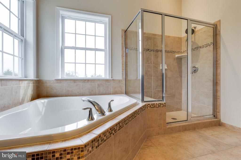 Owners Luxury Bath w/Soaking Tub & Separate Shower - 24215 CRABTREE CT, ALDIE