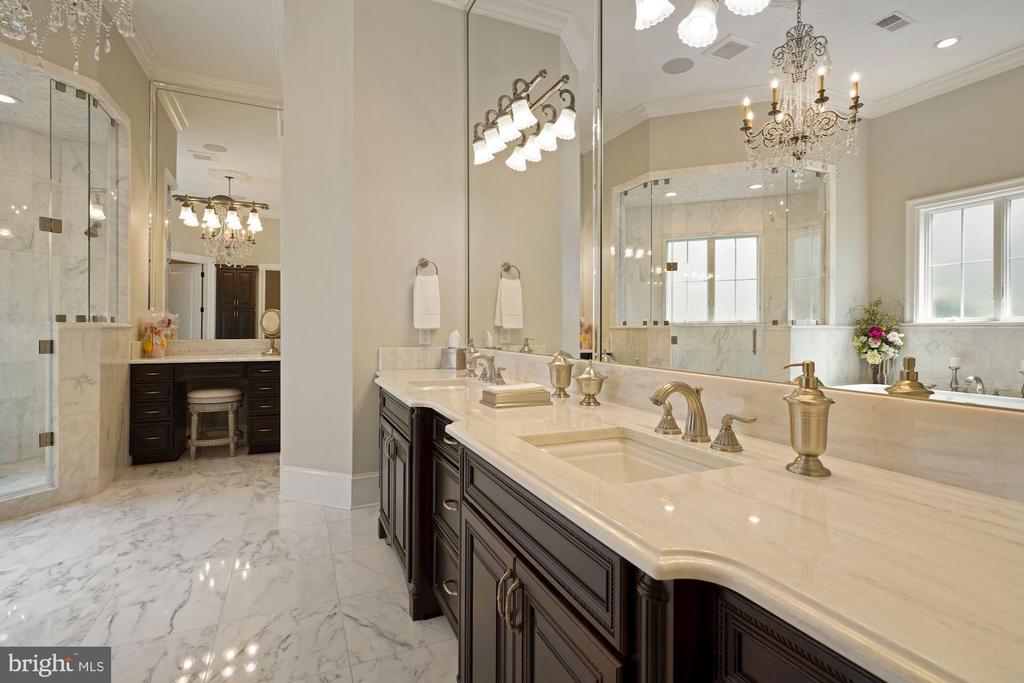 Opulent Owner's Bathroom - 22608 CREIGHTON FARMS DR, LEESBURG
