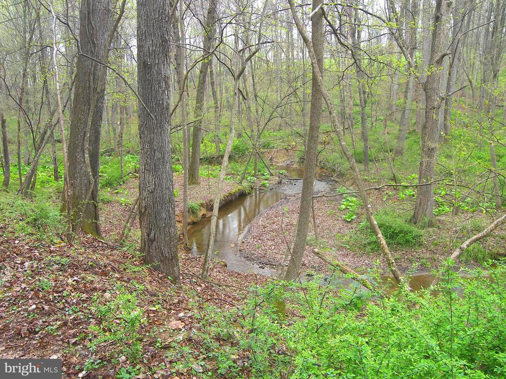 View From the Trail - 14515 SHIRLEY BOHN RD, MOUNT AIRY