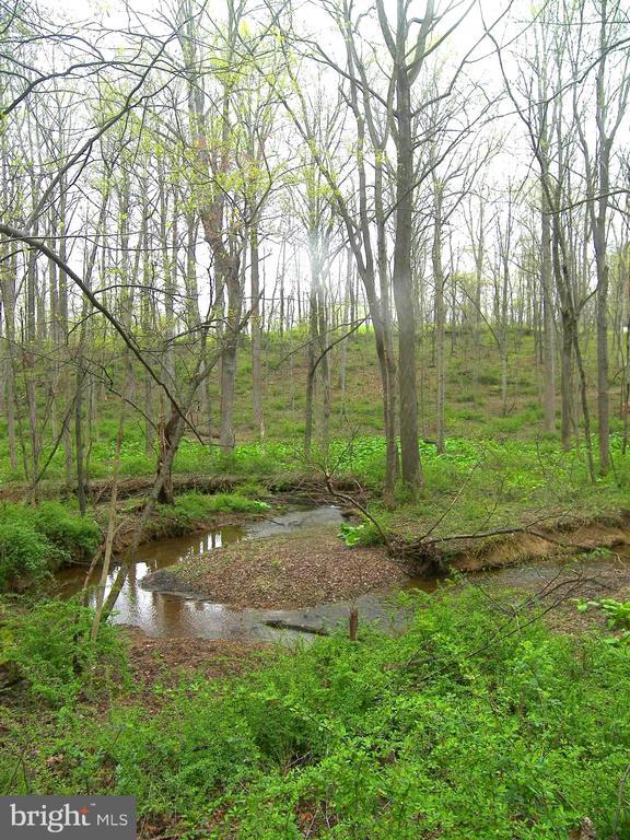Linganore Creek - 14515 SHIRLEY BOHN RD, MOUNT AIRY