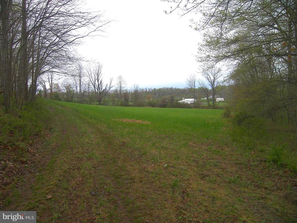 The Triangle Field - 14515 SHIRLEY BOHN RD, MOUNT AIRY