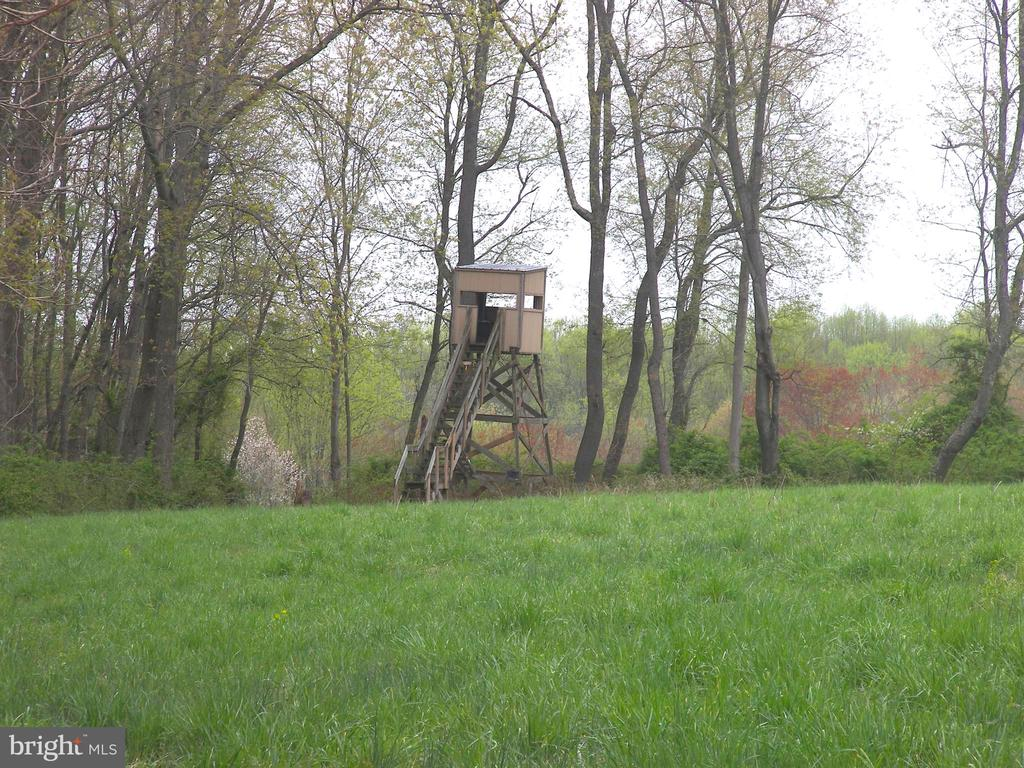 Hunting Stand at High Meadow - 14515 SHIRLEY BOHN RD, MOUNT AIRY