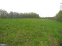 High Meadow - 14515 SHIRLEY BOHN RD, MOUNT AIRY