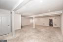 Basement1 - 22525 WILLINGTON SQ, ASHBURN