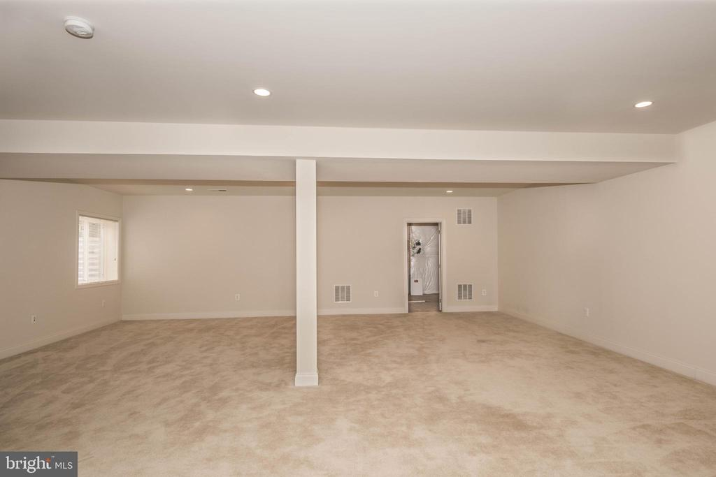 Basement3 - 22525 WILLINGTON SQ, ASHBURN