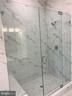 Lovely frameless shower door - 44691 WELLFLEET DR #305, ASHBURN
