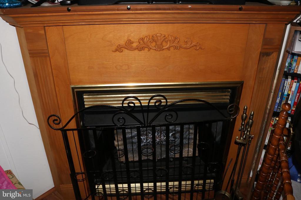 Fireplace - 13708 GABRIEL CT, SPOTSYLVANIA