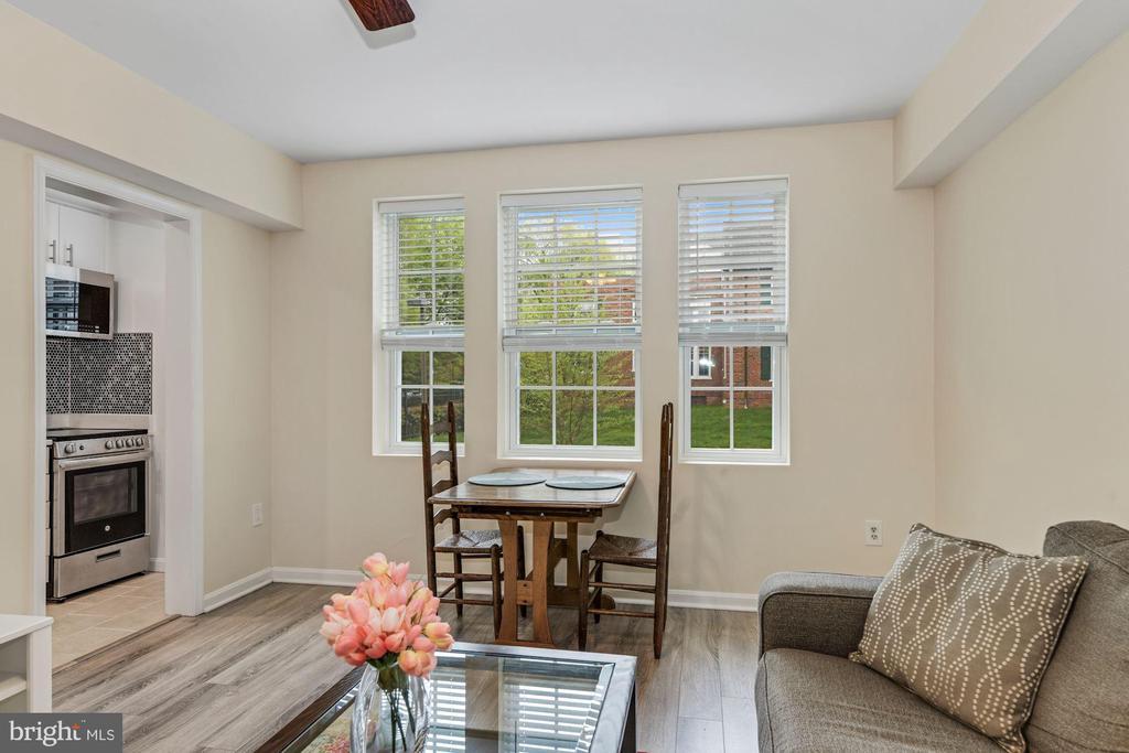 All windows are new - 1816 QUEENS LN #4-222, ARLINGTON