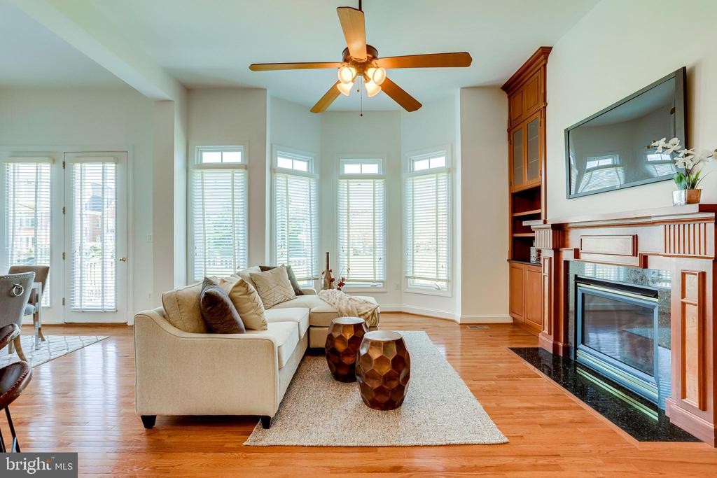 The family room with 10 foot ceilings & gas fplc - 18359 EAGLE POINT SQ, LEESBURG