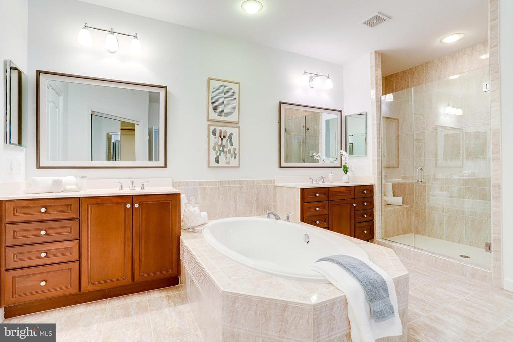 Main bathroom with frameless glass shower door - 18359 EAGLE POINT SQ, LEESBURG