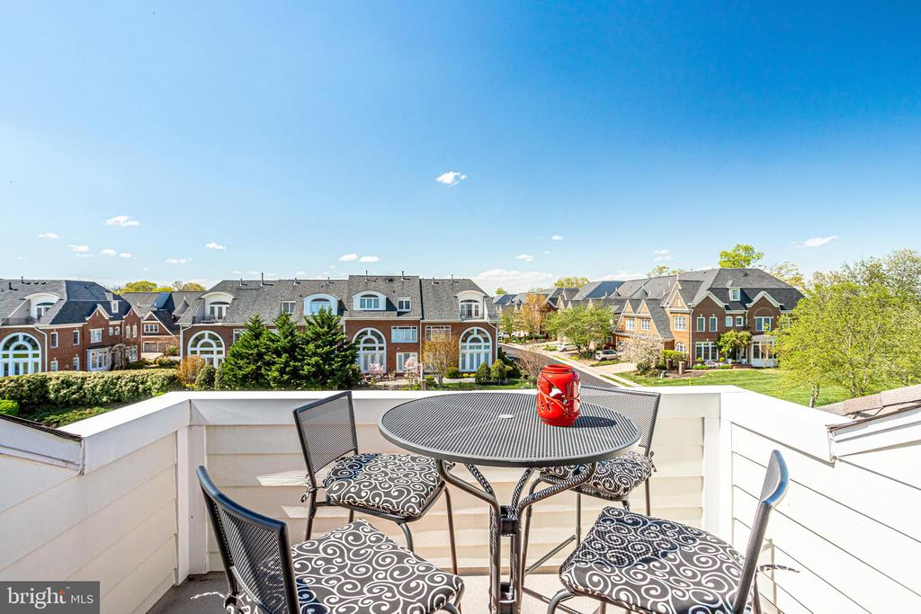 Star watching or sunset drinks...perfect for both. - 18359 EAGLE POINT SQ, LEESBURG