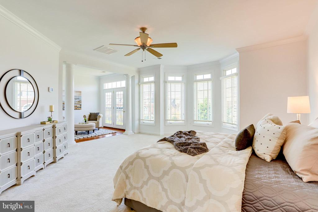 Wall of windows brightens the main bedroom! - 18359 EAGLE POINT SQ, LEESBURG