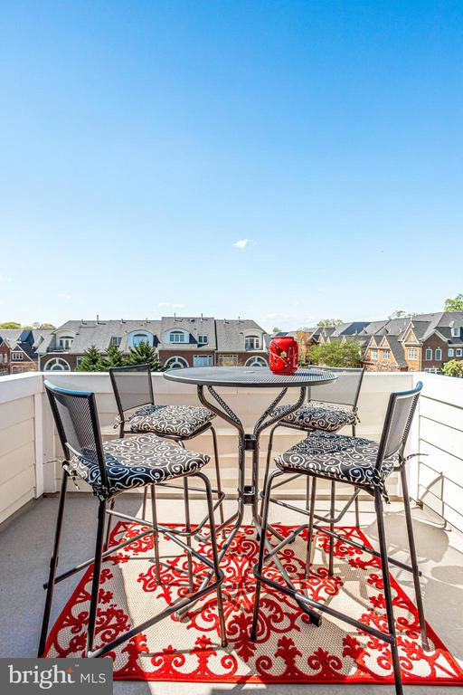 Upper level roof top terrace. Perfect for a drink. - 18359 EAGLE POINT SQ, LEESBURG