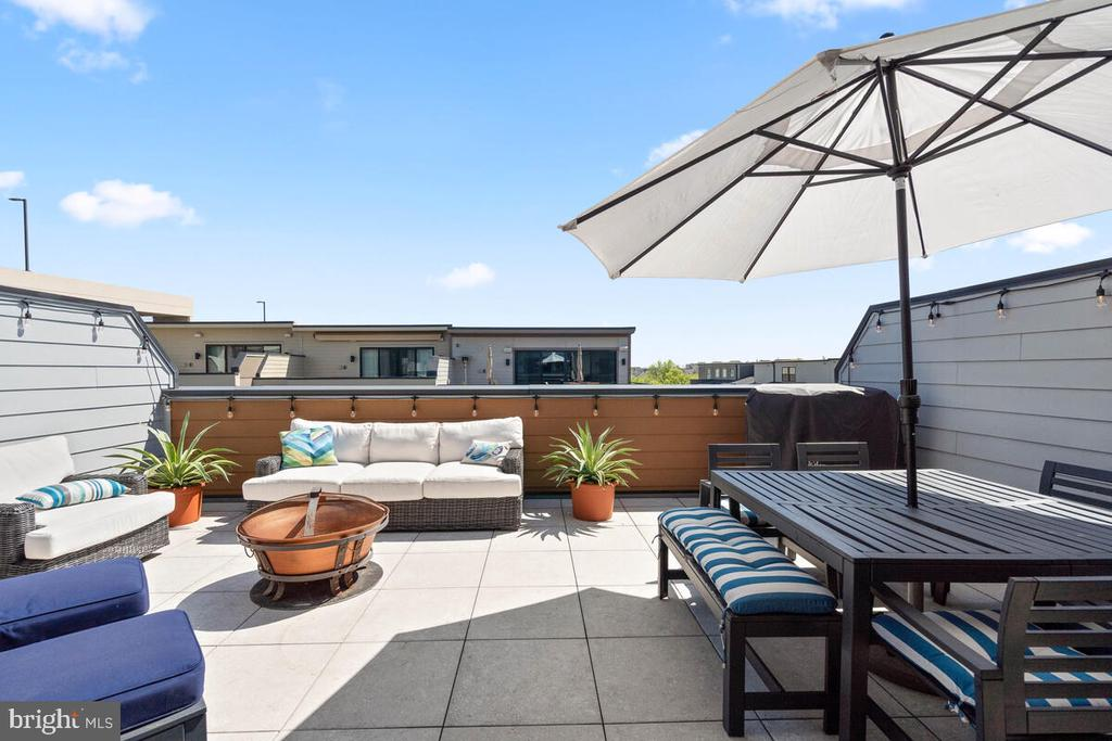 Roof Top Terrace w/Privacy Walls, Level 4 - 44647 DANVERS TER, ASHBURN