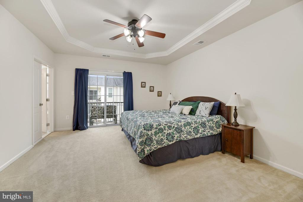 Primary Bedroom - Coffered Ceiling & Overhead Fan! - 43213 THOROUGHFARE GAP TER, ASHBURN
