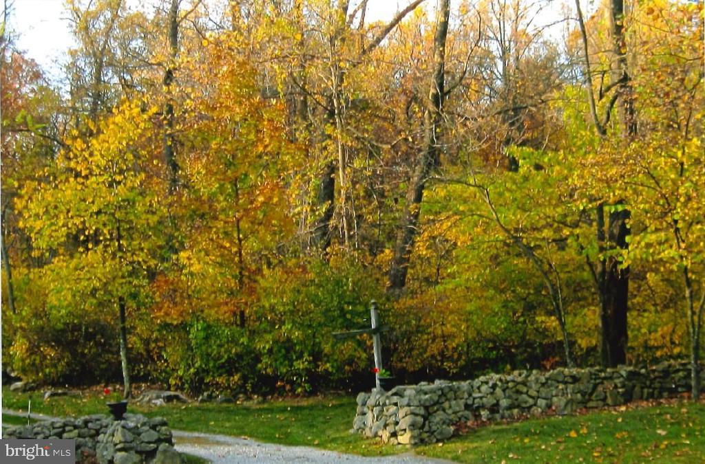 Fall views - 17914 RAVEN ROCKS RD, BLUEMONT