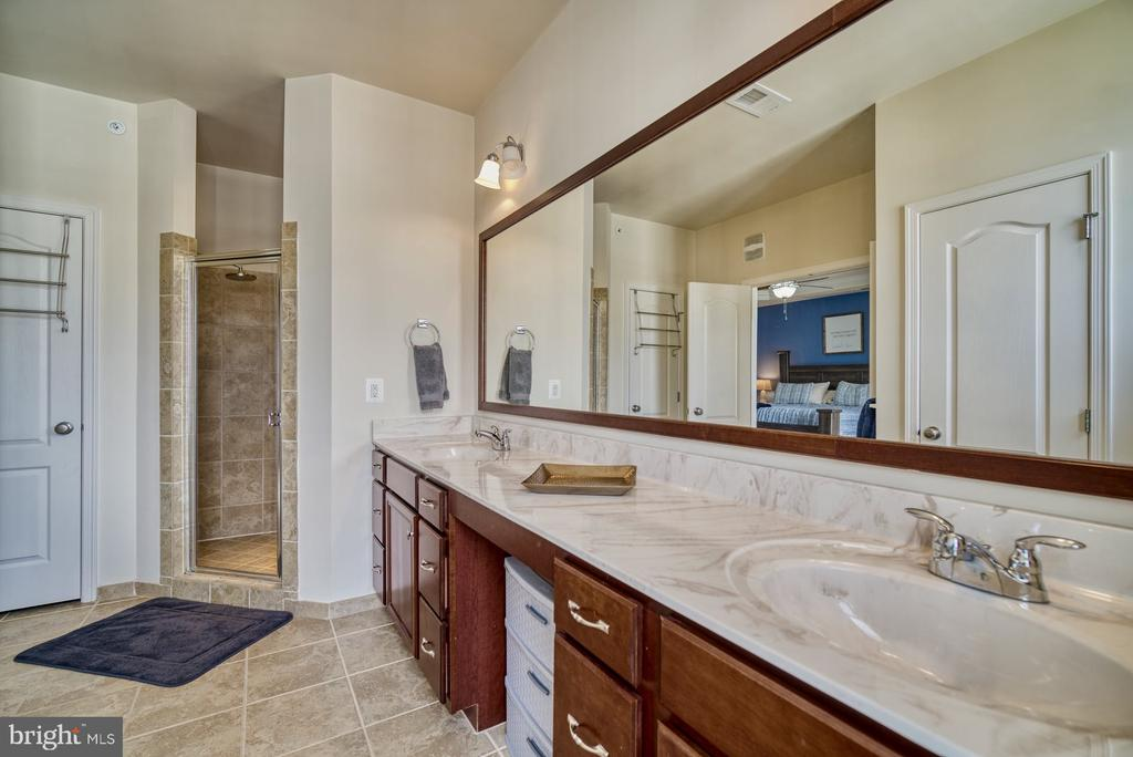 Primary Bathroom has Oversized Shower - 43015 CLARKS MILL TER, ASHBURN