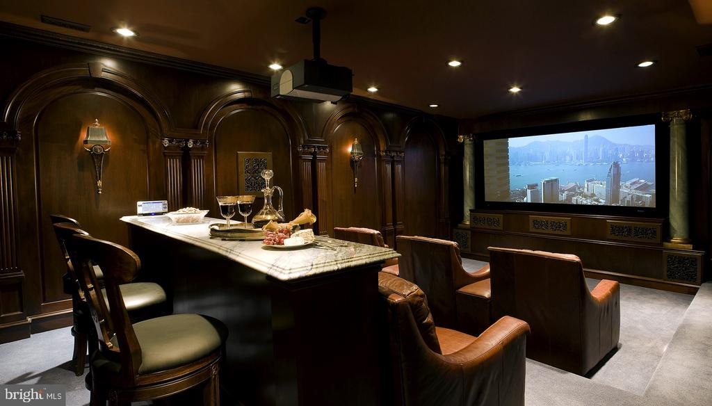 State-of-the-art Home Theater - 9300 RIVER RD, POTOMAC