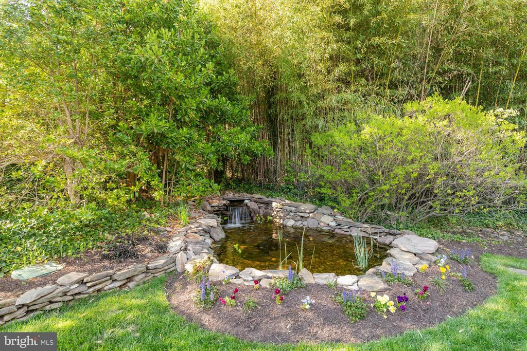 Pond with Fountain - 830 HERBERT SPRINGS RD, ALEXANDRIA