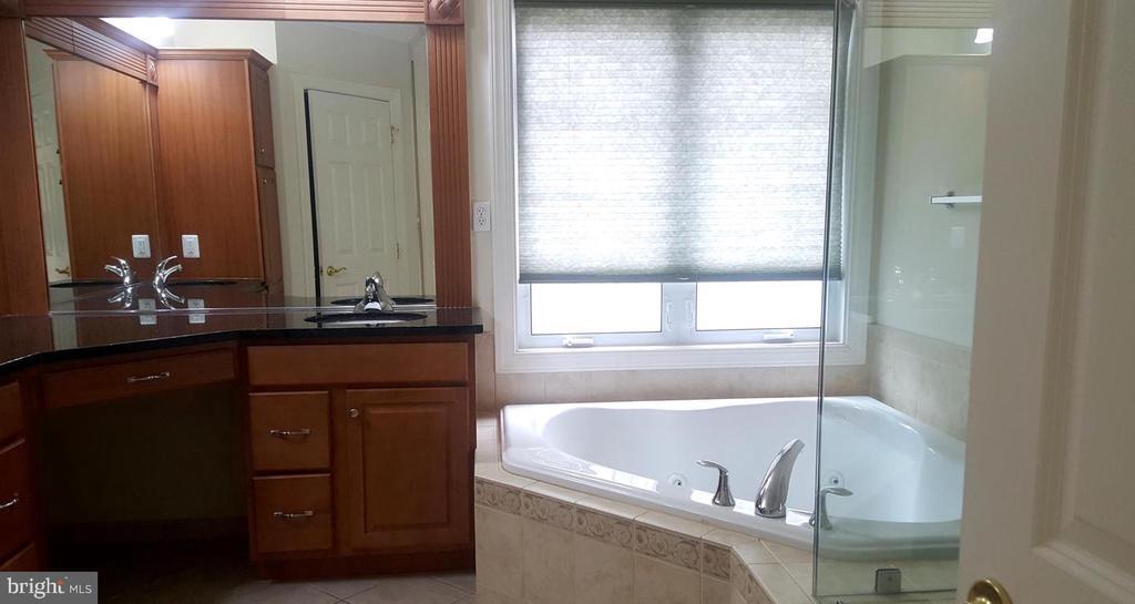 Master Bathroom w/ Separate Tub & Shower - 24905 EARLSFORD DR, CHANTILLY