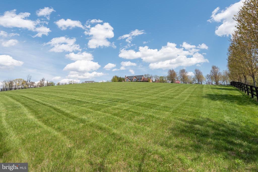 Landscaped Grounds - 8329 MYERSVILLE RD, MIDDLETOWN