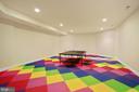 Lower Level Recreation Room - 9211 BLACK RIFFLES CT, GREAT FALLS