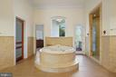 Owners' Luxury Bath - 9211 BLACK RIFFLES CT, GREAT FALLS
