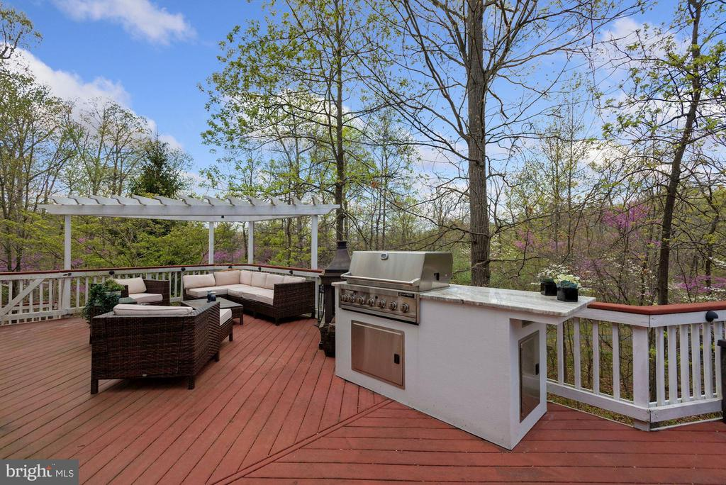 Very Private backyard with Grill - 19582 SARATOGA SPRINGS PL, ASHBURN