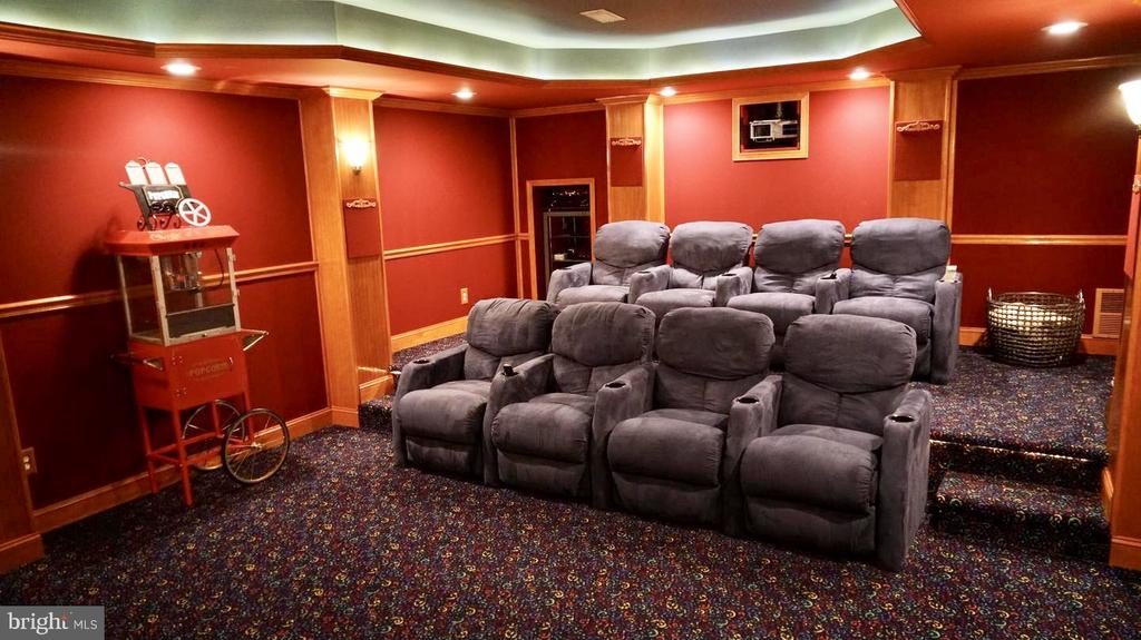 High-end Home Theatre with Loungers - 19582 SARATOGA SPRINGS PL, ASHBURN