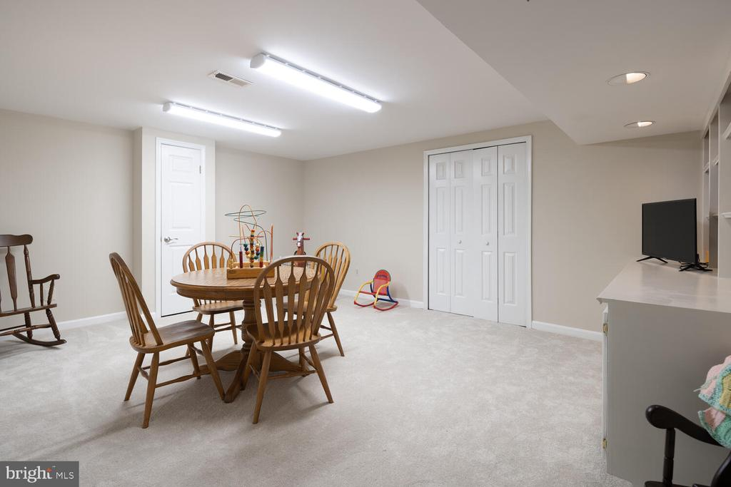 Playroom with plenty of Storage Space! - 10654 CANTERBERRY RD, FAIRFAX STATION