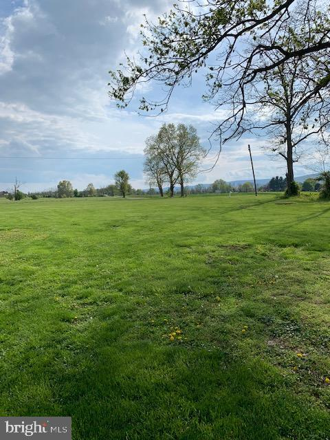 Large Front yard - 10612 SHEELEY RD, THURMONT
