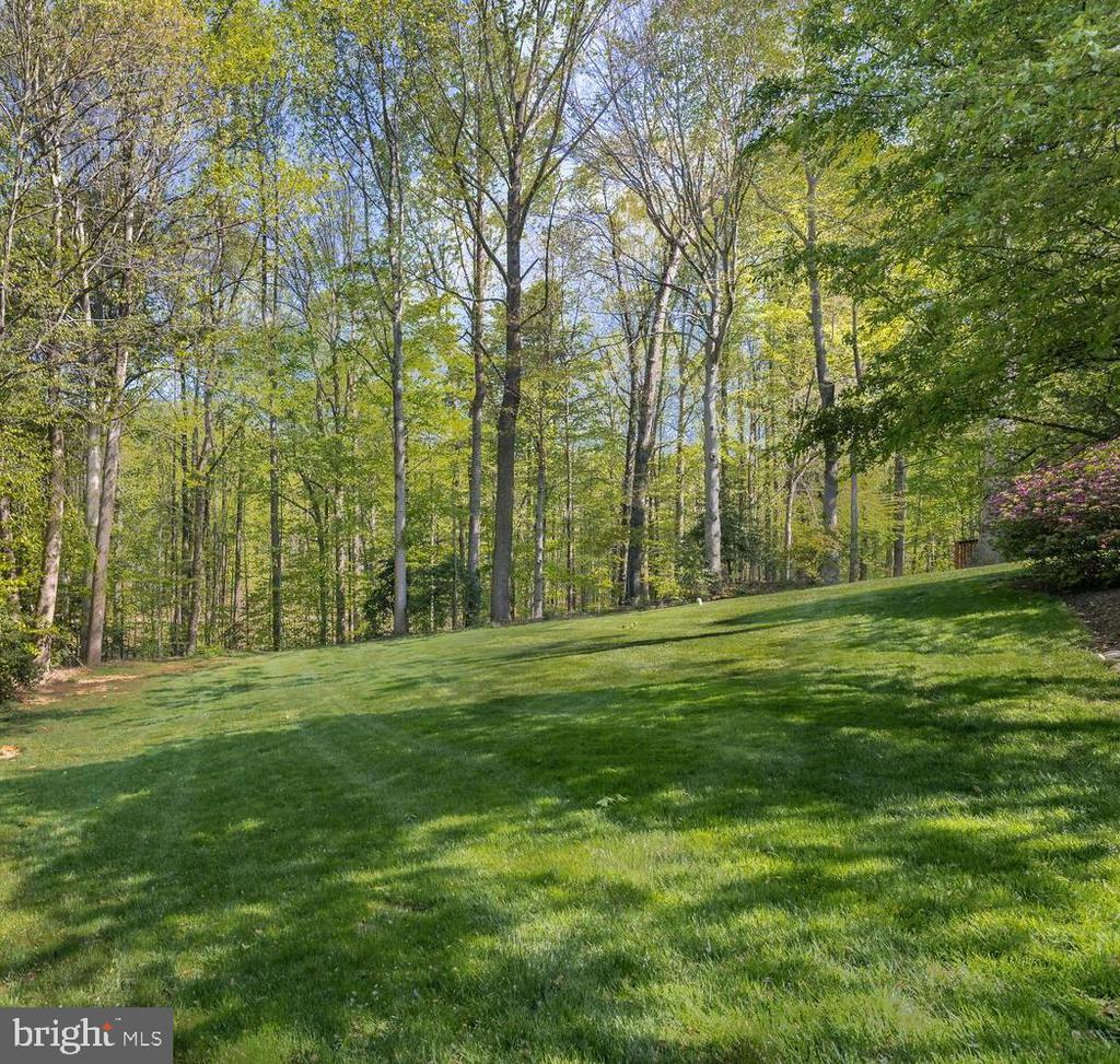 Lush Green Lawn is Perfect for Outdoor Games - 10654 CANTERBERRY RD, FAIRFAX STATION