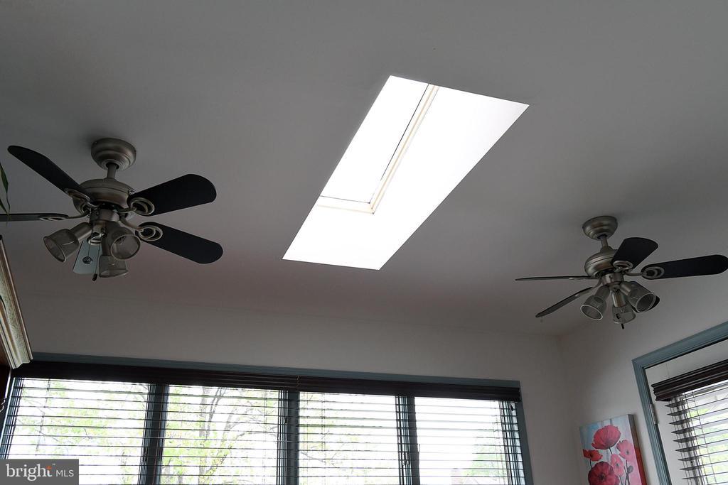 Sunroom skylight and 2 ceiling fans - 312 SYCAMORE DR, FREDERICKSBURG