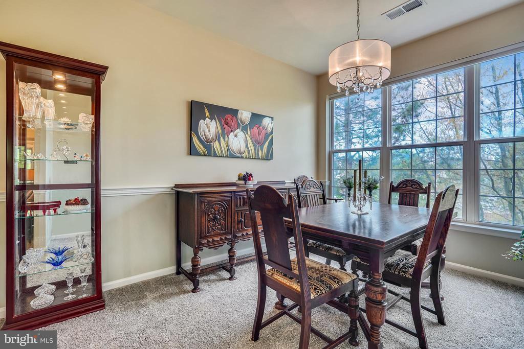 Newer updated dining room chandelier - 20933 CEDARPOST SQ #302, ASHBURN