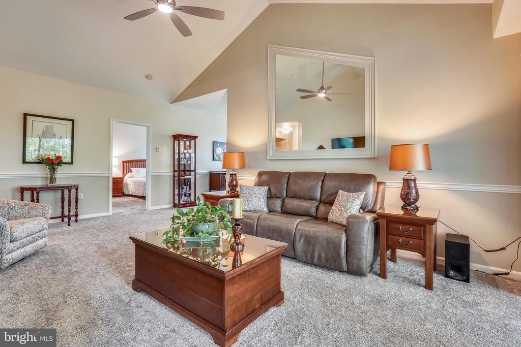 Large ceiling fan and  newer pet-friendly carpet - 20933 CEDARPOST SQ #302, ASHBURN