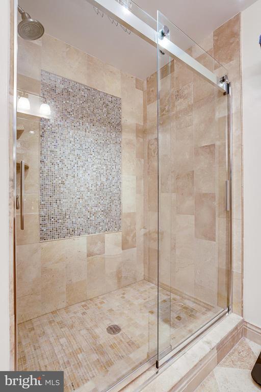 Large walk-in shower hall bathroom. - 1206 WOODBROOK CT, RESTON