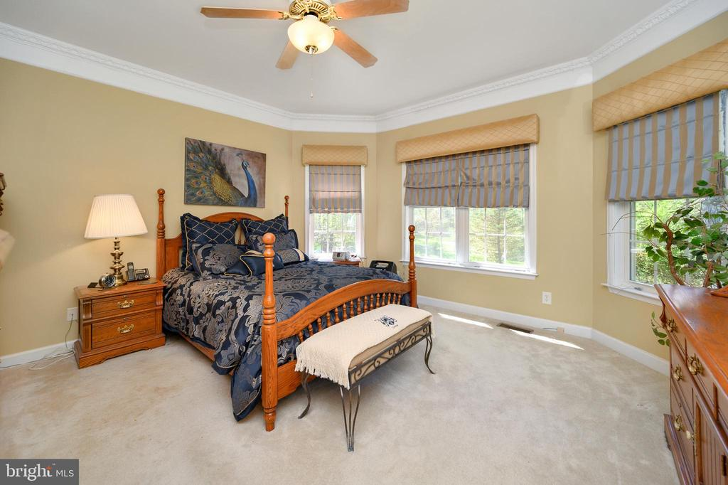 Spacious owner's suite that is full of light - 609 STRATFORD CIR, LOCUST GROVE