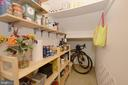 Lower Level Pantry-Storage Closet - 2917 S WOODSTOCK ST #A, ARLINGTON