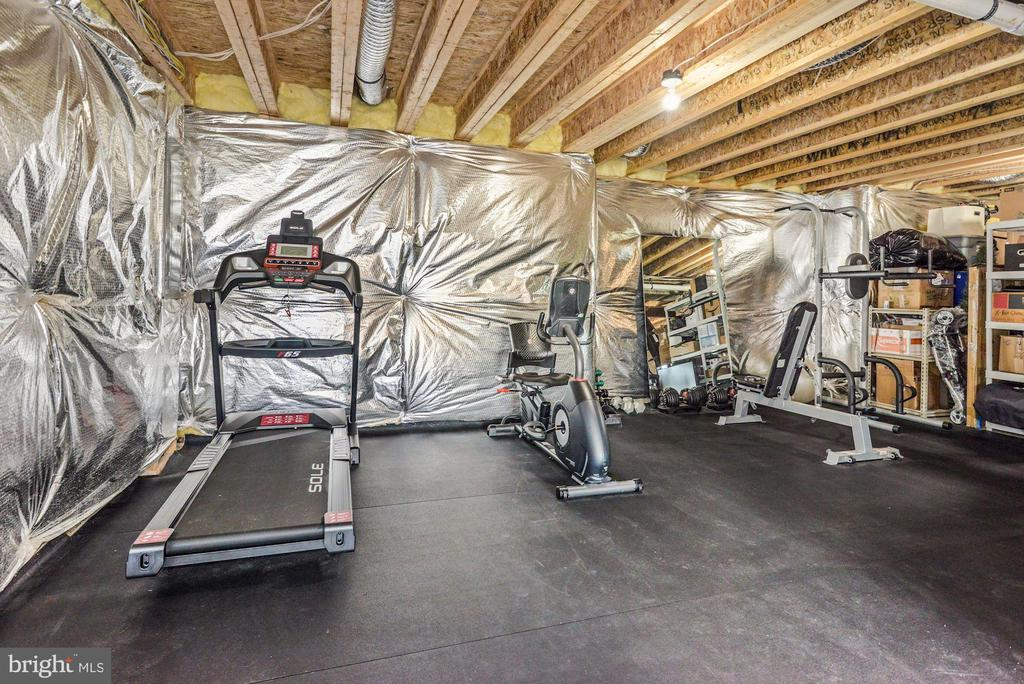 Lower level gym - 24177 STATESBORO PL, ASHBURN
