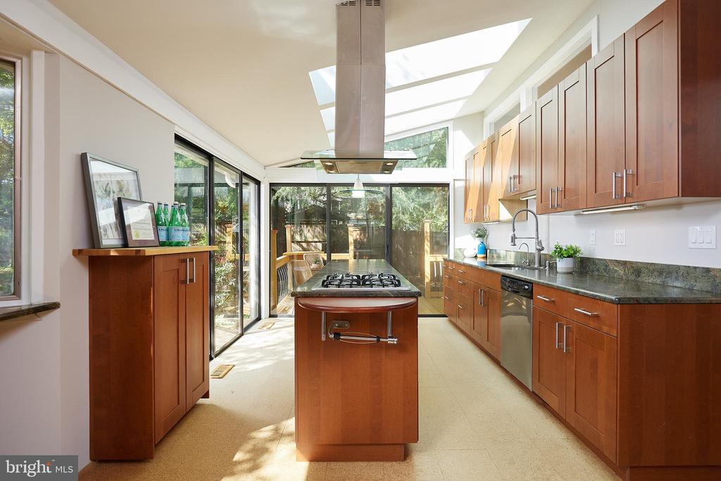 Designer kitchen - 11530 HIGHVIEW AVE, SILVER SPRING